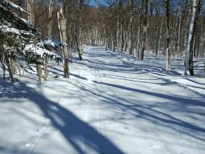 Prospect Mountain January 31