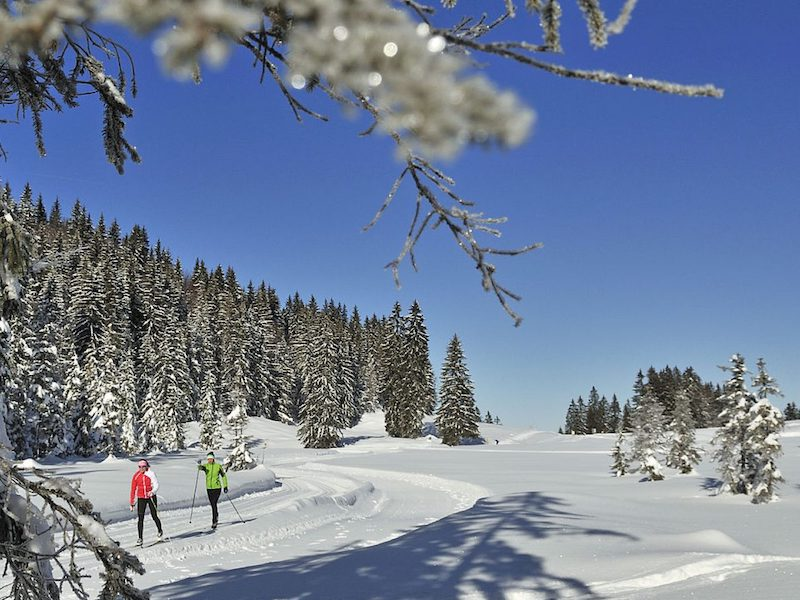 Cross-country skiers on trail at Hemmersuppenalm